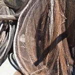 Nielegalne połowy ryb na Żuławach Elbląskich. Kłusowników nie odstraszają surowe kary