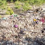 Składowisko śmieci zamiast inwestycji?