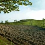 Wiceminister Babalski uspokaja: obrót ziemią nie jest zagrożony