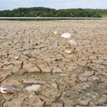 Niepokojąco niski poziom wód w jeziorach