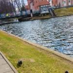 Kładka nad Kanałem Łuczańskim miała być gotowa przed sezonem. Wykonawca dopiero oddał ją do użytku