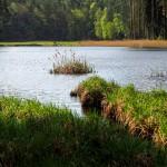 Rezerwat Sołtysek trzykrotnie zwiększył swoją powierzchnię