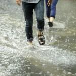 IMGW ostrzega: nad województwo nadciągają ulewy