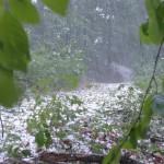 Meteorolodzy ostrzegają przed burzami i gradem