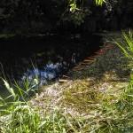 Trwa koszenie podwodnych trawników. Kajakarze i wędkarze muszą być wyjątkowo ostrożni