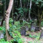 W Mrągowie odsłonięto tablicę upamiętniającą cmentarz żydowski