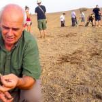Badania archeologiczne pod Grunwaldem – VIDEO