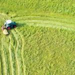Podawali się za rolników bo chcieli wyłudzić unijne dotacje