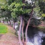 Wspólne spotkanie nad rzeką Łyną
