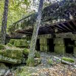 Lasy Państwowe odbiły byłą kwaterę Hitlera z rąk prywatnej spółki. Przez kilka dni wstęp na teren Wilczego Szańca będzie bezpłatny