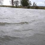 Obniża się poziom wody na Żuławach Elbląskich