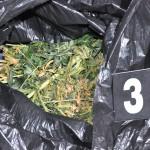 Marihuana, tytoń i alkohol w mieszkaniu 53-latka