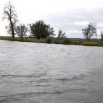 Silny wiatr i cofka na Żuławach. Wprowadzono monitoring stanu wód