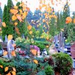 Pomagają dojechać na cmentarze i znaleźć groby. Giżycko namawia do korzystania ze specjalnych aplikacji