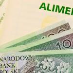 Długi alimentacyjne Polaków sięgają już 12,3 mld złotych