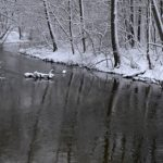 Hydrolodzy ostrzegają – podniósł się stan wody w rzekach na obszarze powiatu elbląskiego i braniewskiego
