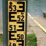 Powoli rośnie poziom wody w jeziorze Druzno na Żuławach Wiślanych