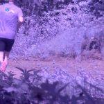 Poranny jogging na granicy zakończył się mandatem