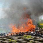 Na Warmii i Mazurach lawinowo rośnie liczba pożarów traw.  W miniony weekend  strażacy interweniowali ponad 100 razy