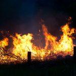 11 zastępów straży pożarnej walczyło w nocy z ogniem. Paliły się przydomowe budynki