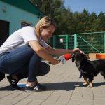 Monika Szczygło: Pies to członek naszej rodziny