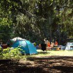 Zakończyły się kontrole letnich obozów. W dwóch przypadkach dzieci zostały przeniesione
