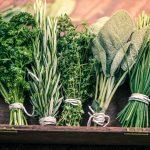 Pięć roślin, które cię uzdrowią, czyli must have domowej apteczki