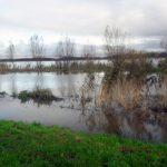 Przekroczone stany alarmowe na Żuławach
