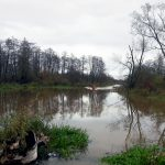 Nadal obowiązuje zagrożenie powodziowe na Żuławach Elbląskich