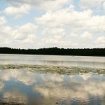 Jezioro Gołdap zostanie oczyszczone z sinic. To pierwsza w Polsce rekultywacja jeziora taką metodą