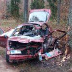 Samochód wypadł z drogi i zatrzymał się na drzewie.  Kierowca i pasażerowie przeżyli