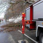 Mocno namoknięty grunt jest przyczyną osunięć drzew w jarach Wysoczyzny Elbląskiej