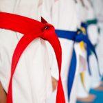 Zajęcia pod okiem mistrza. Selekcjoner kadry narodowej Wielkiej Brytanii szkoli olsztyńskich zawodników i trenerów taekwondo