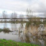 Pogarsza się sytuacja hydrologiczna w depresyjnej części powiatu elbląskiego