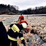 Policjanci i strażacy ruszyli z pomocą przymarźniętemu do tafli jeziora łabędziowi