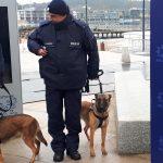Do olsztyńskiej policji trafiły nowe radiowozy i szkolone psy
