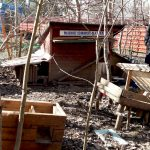 Wandale niszczą domki dla kotów. Znów zdemolowali budki na olsztyńskim Pieczewie