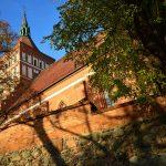 Olsztyński PiS modlił się za ojczyznę. Podczas mszy proszono także o oddalenie epidemii i deszcz