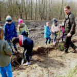 Nadleśnictwo Elbląg zachęca  do sadzenia lasu