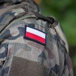 Wielonarodowa Dywizja Północny-Wschód w Elblągu gotowa do działania. W czwartek uroczyste podsumowanie i wręczenie nominacji generalskich