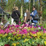 Wybrano hity Wiosennych Targów Ogrodniczych w Olsztynie