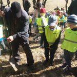 Nowy las na 100-lecie odzyskania niepodległości