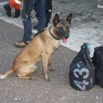 """Olsztyńska policjantka i pies Nero pomagali w """"Zofiówce"""""""