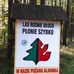 Najwyższy stopień zagrożenia pożarowego w lasach Warmii i Mazur. Wilgotność sprawdzana jest dwa razy dziennie