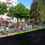 Uczniowie na rowerach, deskorolkach i hulajnogach. W elbląskich szkołach ruszyła kampania Rowerowy Maj