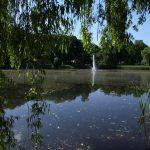 Kiedyś tętnił życiem, teraz odzyskuje dawny blask. Olsztyński Park Jakubowo zaprasza na cykl plenerowych imprez