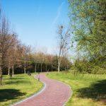 Spaceruj po parku – nie tylko dla zdrowia ciała, ale i ducha