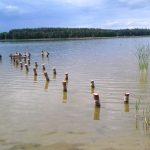 Działka nad mazurskim jeziorem za symboliczną złotówkę. Wysokość czynszu budzi kontrowersje