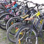 Prawie 130 tysięcy uczniów z Elbląga uczestniczyło w akcji Rowerowy Maj