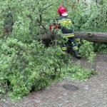 Burze nad Warmią i Mazurami. Wichury powaliły kilkadziesiąt drzew. Wielu mieszkańców zostało pozbawionych prądu